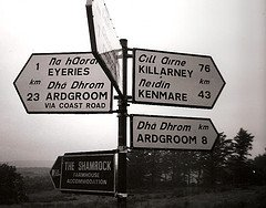 Gaelic Irish words on signpost