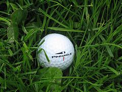 Origin of Golf - Scottish Golf  History
