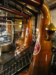 Bushmills 16 year best Irish whiskey