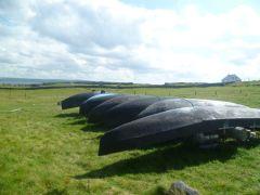 Gaelic Language in decline in  Irish  Fishing villages